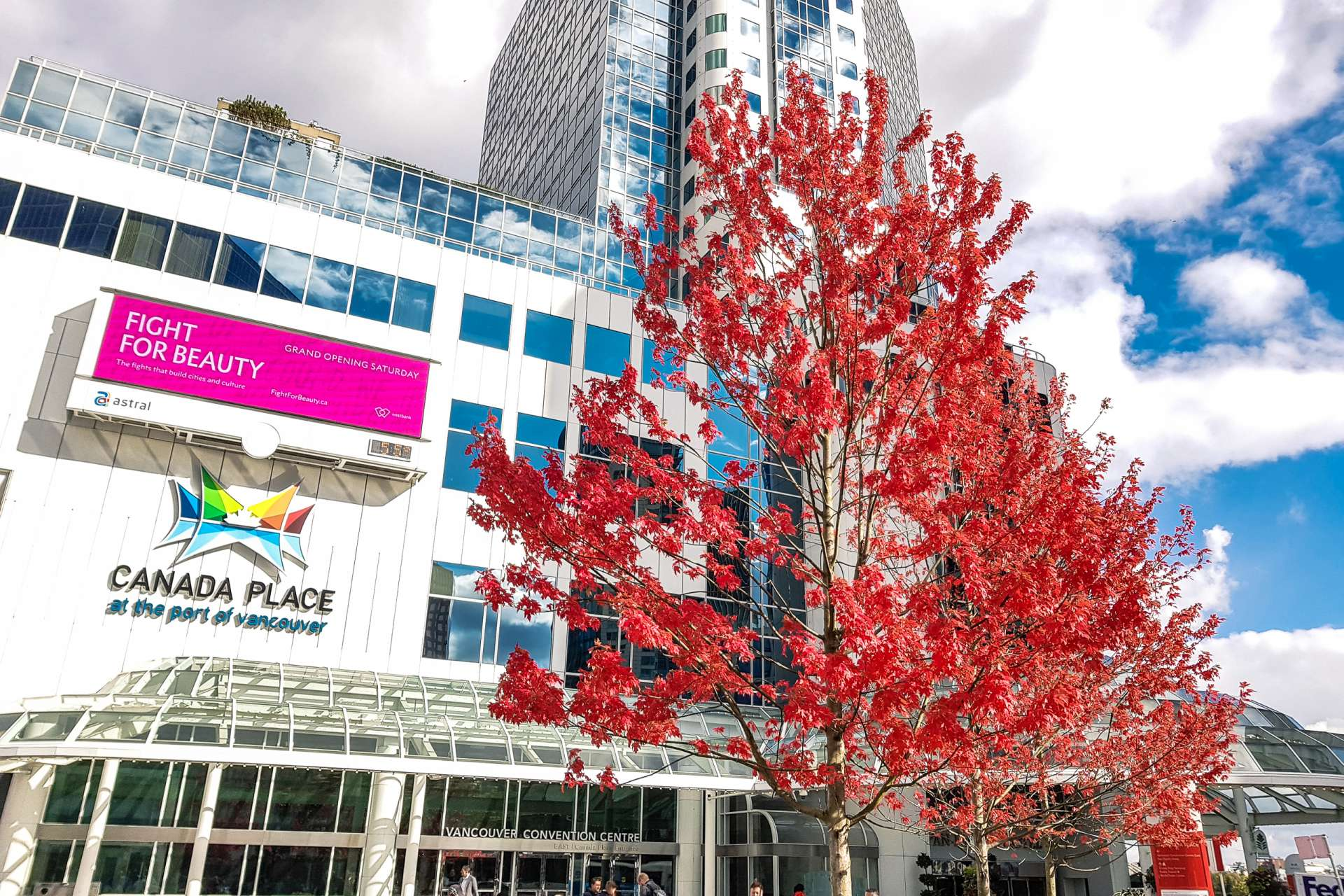 Canada Vancouver Fall
