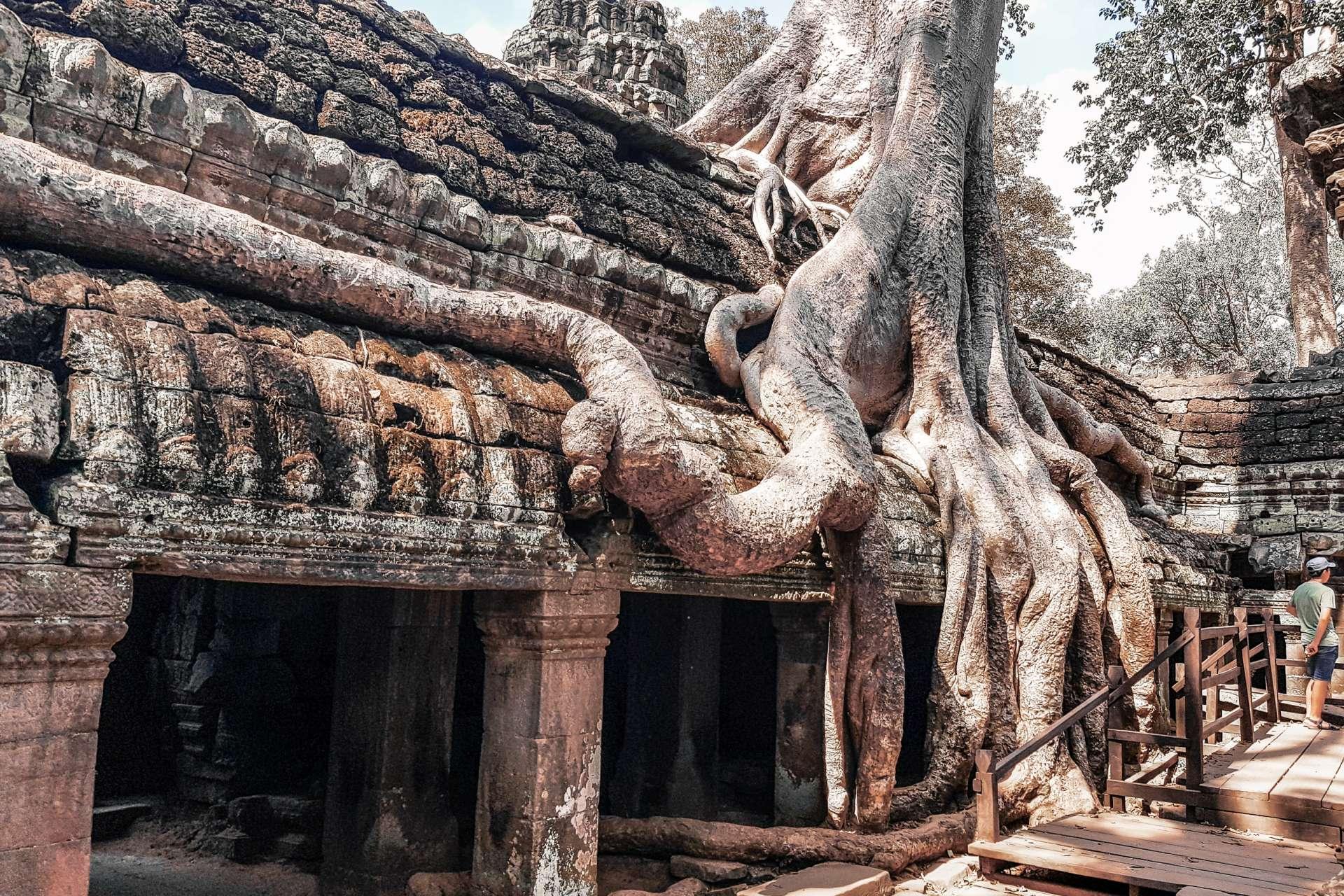Cambodia Angkor Wat Lara Croft