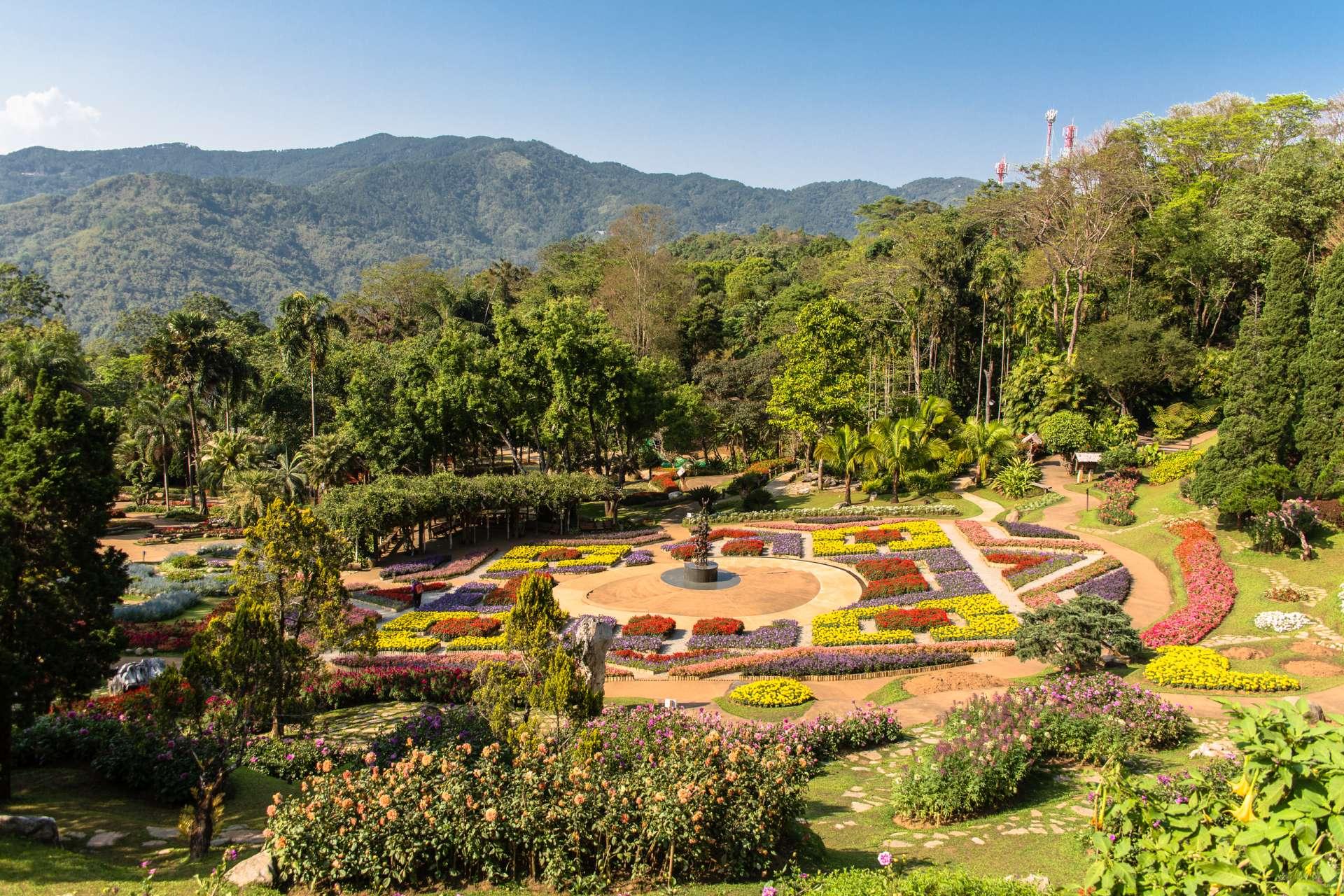 Thailand Chiang Rai flower garden