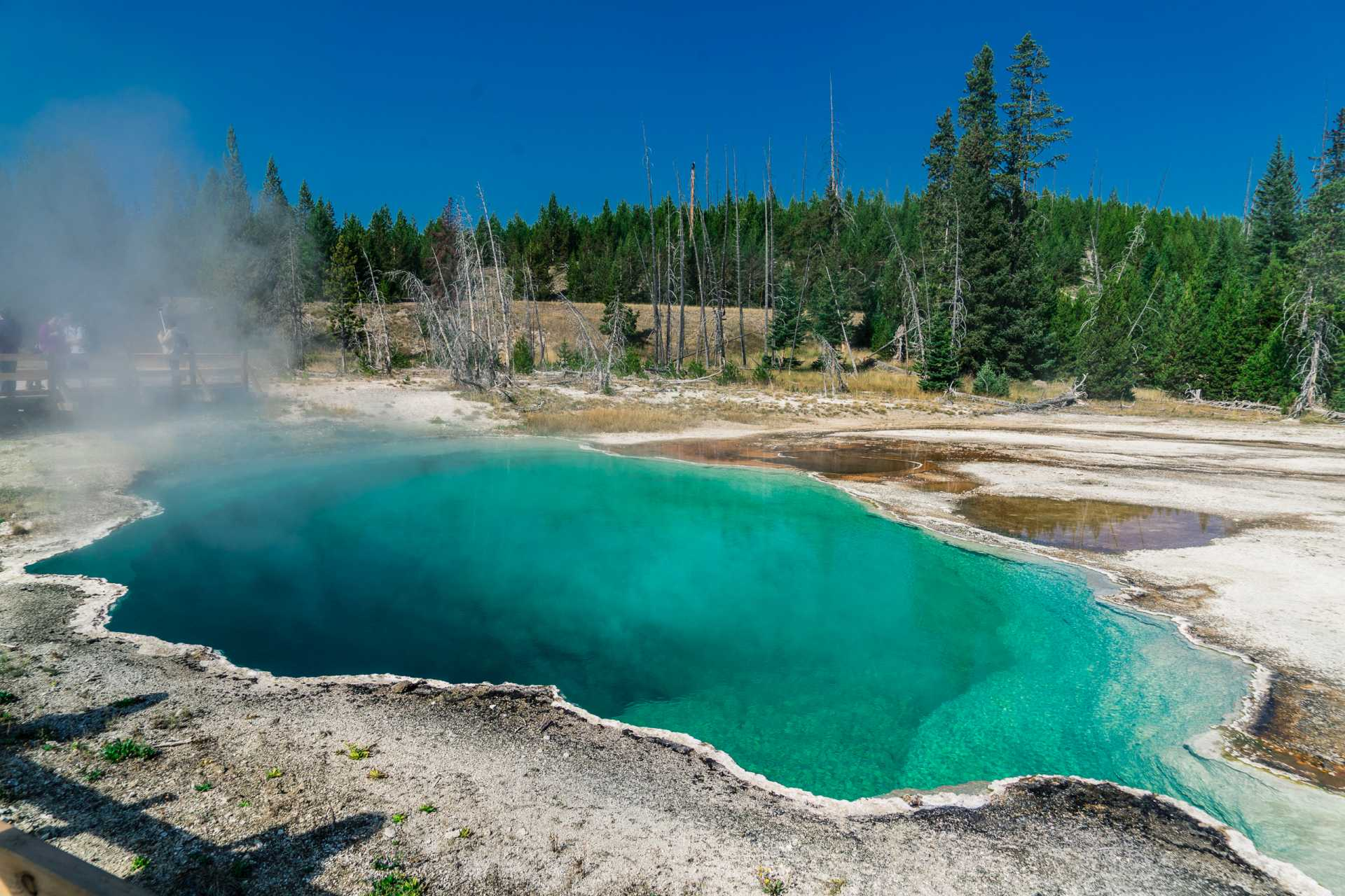 USA Yellowstone