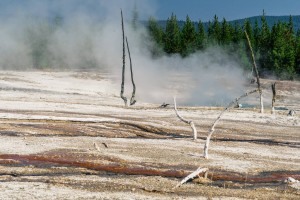 USA Yellowstone National Park